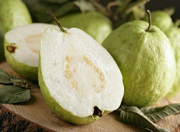 What can you do about guava seeds right now?